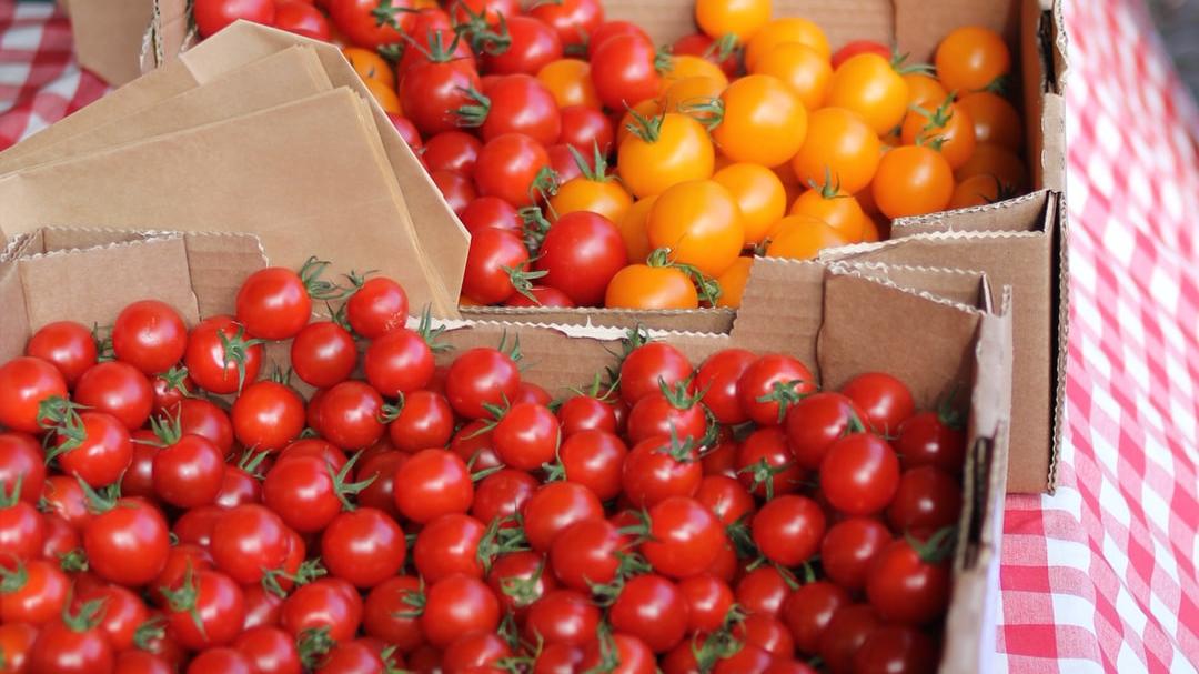 1000 fresh produce boxes